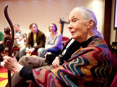 Dr Jane Goodall at CEESA Conference in Warsaw Photo by Matt Kollasch