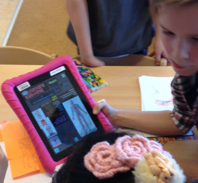 Grade 2 iPad Presentations